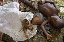 malaria blog